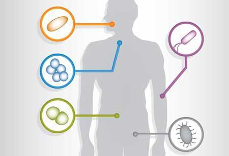 Ways of Analyzing Human Microbiome