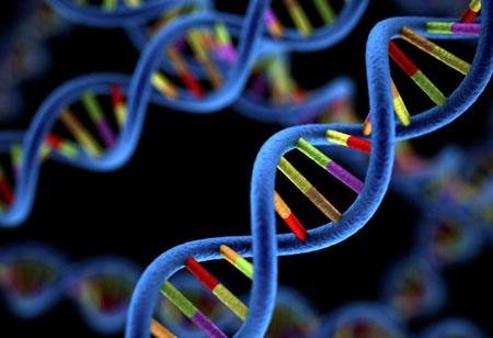 The Use of Genomics Impacts Precision Medicine
